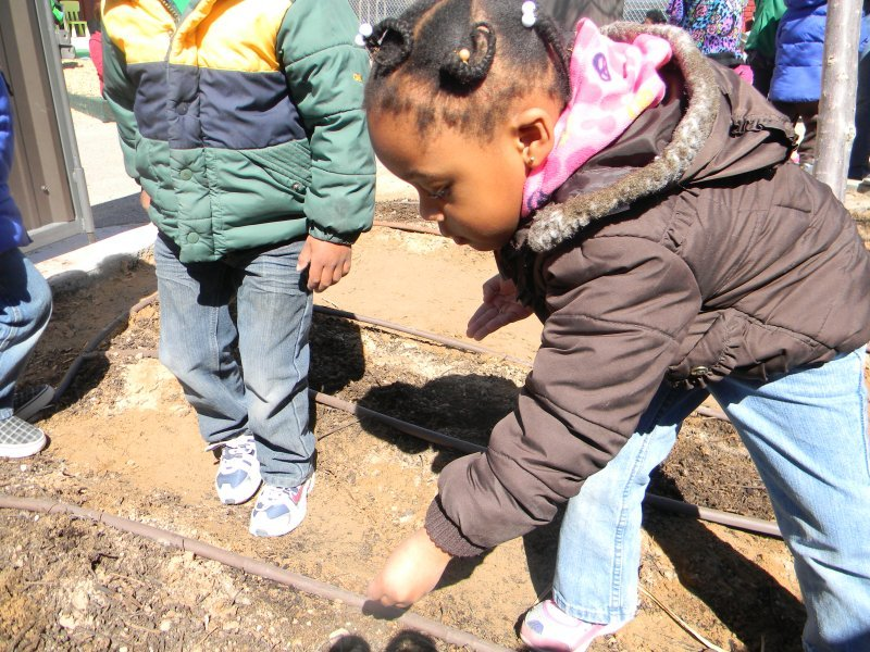 prek_sciencegardening-2