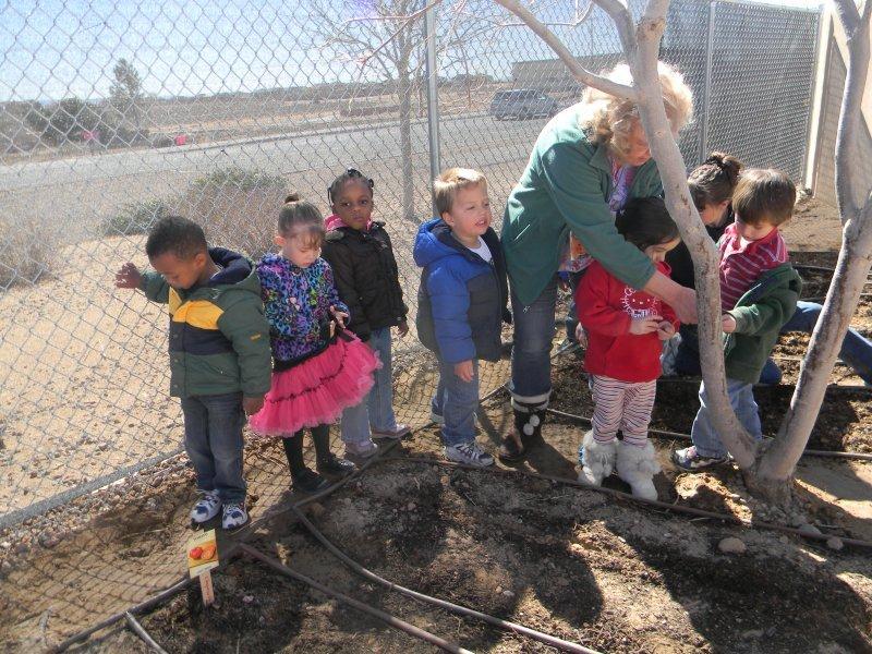 prek_sciencegardening