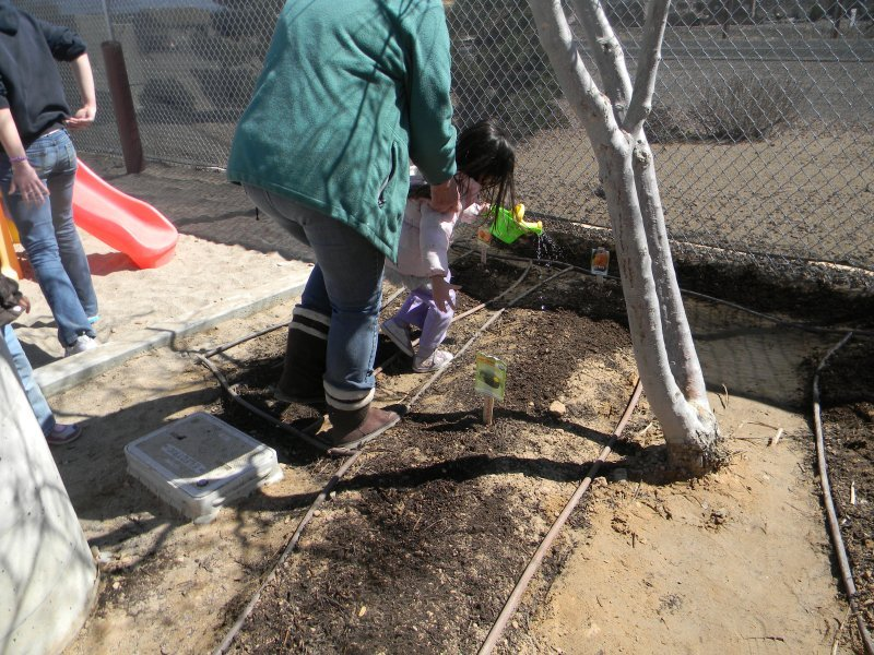 prek_sciencegardening4
