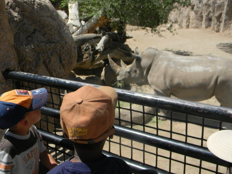 preschool_fieldtrip_zoo