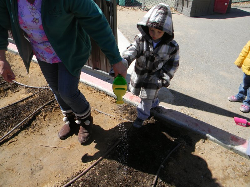 preschool_sciencegardening