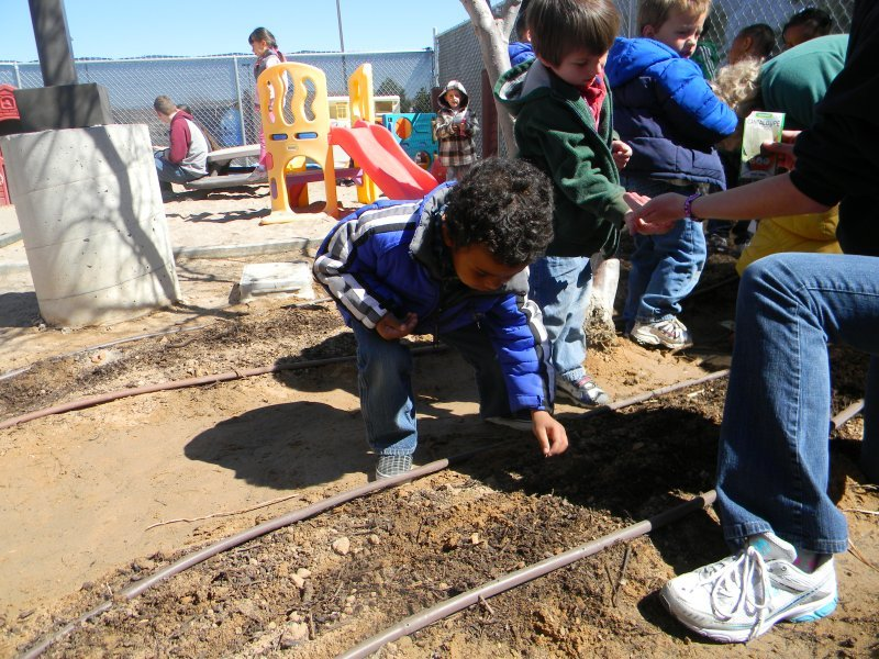 preschool_sciencegardening2
